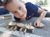 Tretješolci so zunaj ustvarjali  kipe živali iz lesenih gradnikov